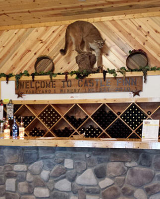 Castle Finn Winery Front Counter