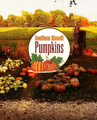 Indian Knoll Pumpkins